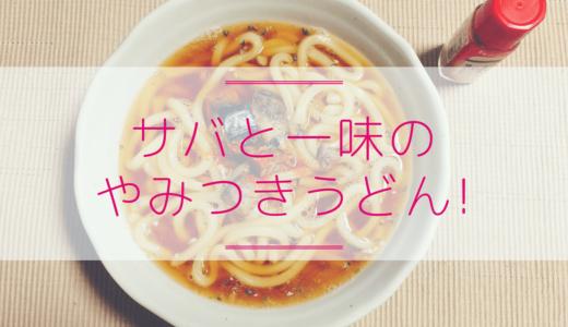 簡単レシピ!サバ缶(水煮)&一味唐辛子のピリッとやみつきうどん【写真付】